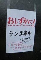 0627張り紙.jpg